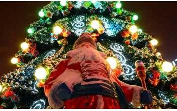 Новогодняя елка в Харькове: открытие